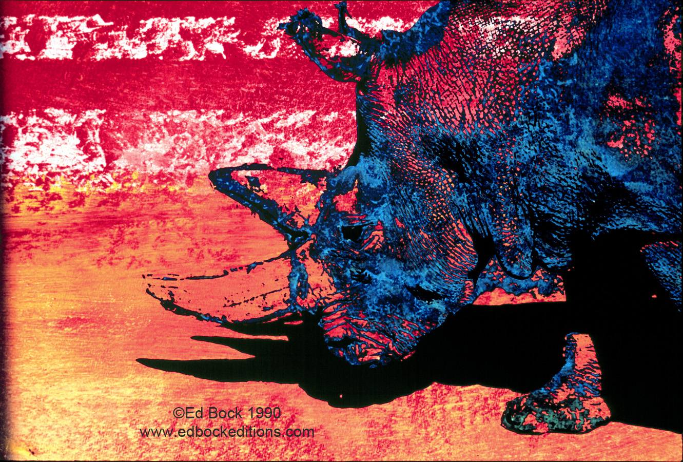 Rhino, Rhinoceros, Blue, animal, orange, red, Mixed media, art, acrylic, watercolor, fine art, prints, artwork, collage, poster, photo, canvas, giclee, painting, contemporary, modern, abstract, colorful, art prints from Ed Bock, EdBockEditions